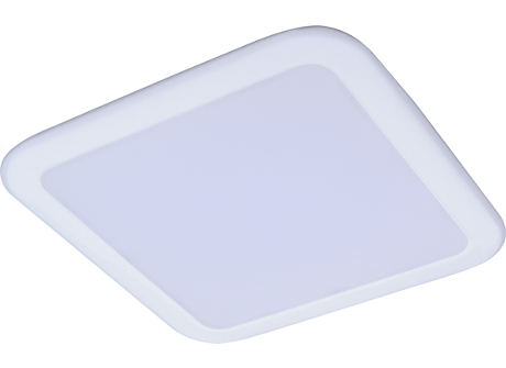 DN027B LED6/CW L100 SQ