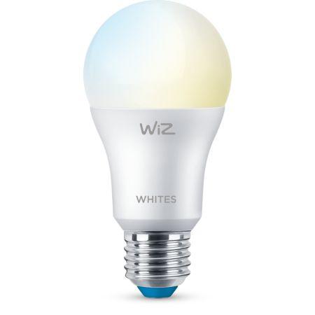 Bulb A60 E27