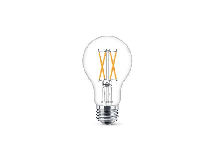 LED A19-A21