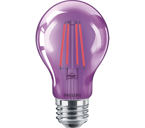 4A19/LED/PURPLE/G/E26/ND 6/1BC