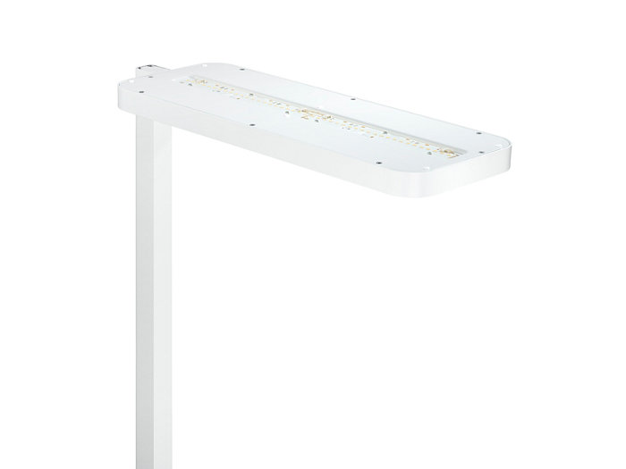 LED modules for indirect light