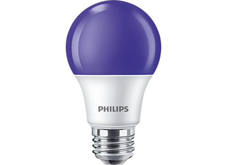 8A19/LED/PURPLE/P/ND 120V 6/1BC