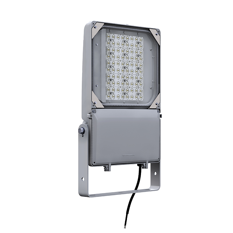 DuraForm LED floodlight Medium FLDM