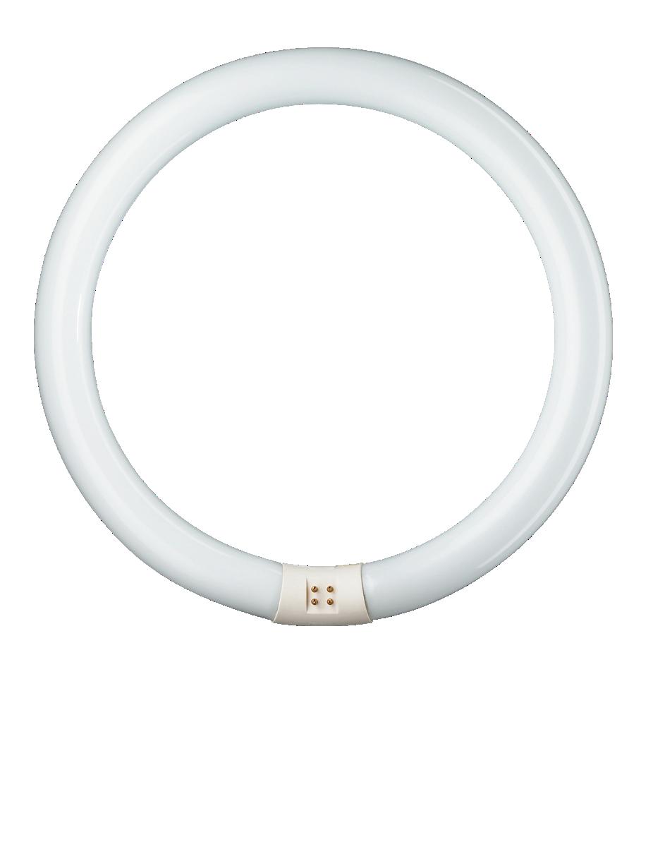 TL-E 40W//840 1CT//12 MASTER TL-E Circular Philips Lighting T L E Ring Lampe g10q