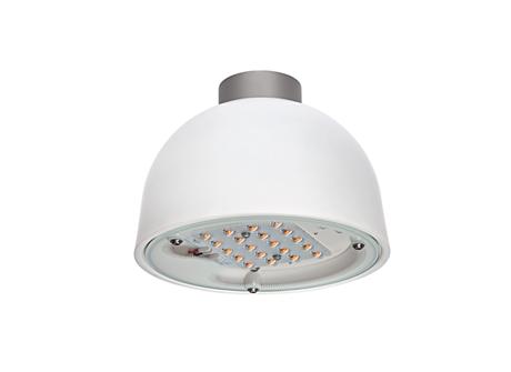 BDS559 LED15/830 II GL-DS50 CLO C4K