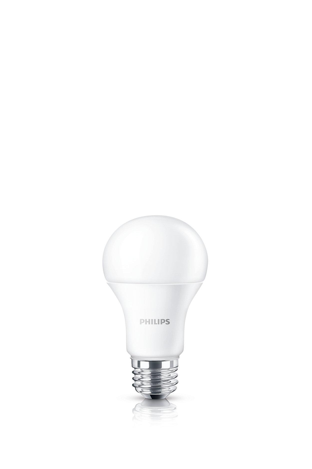 따뜻한 백색광 LED의 경험