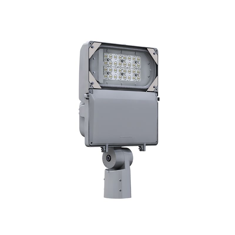 DuraForm floodlight FLDS, A06 configuration, 80CRI 2700K, RNF optic