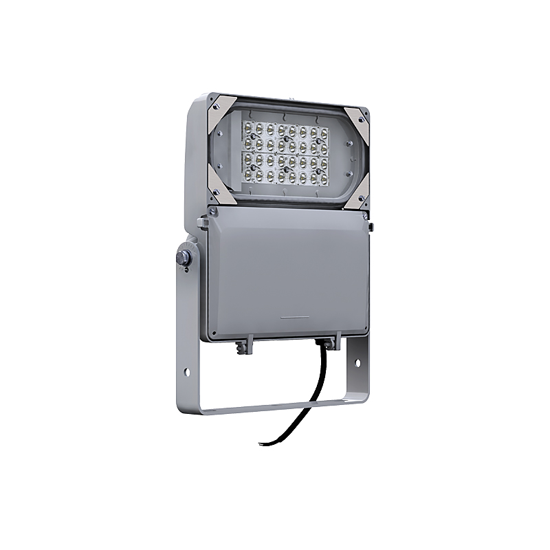 DuraForm Small LED Floodlight (FLDS)