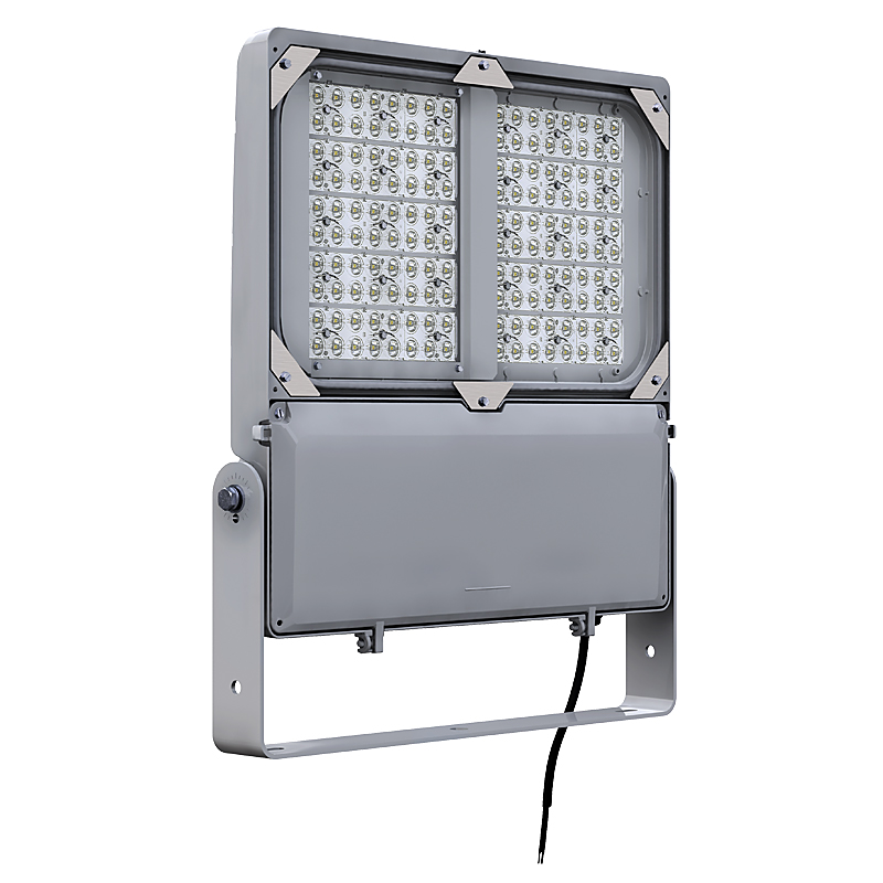 DuraForm Large LED Floodlight (FLDL)