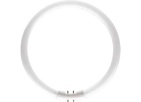 MASTER TL5 Circular 40W/840 1CT/10