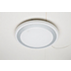 智能 LED 吸顶灯