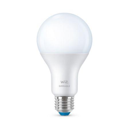Bulb A21 E26