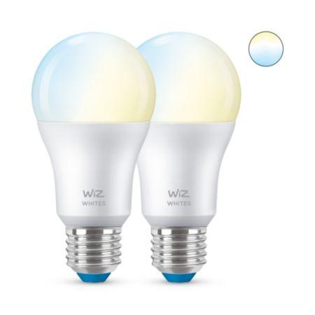 Lamp A60 E27 x2